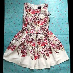 Just... Taylor Fit and Flare Floral Scuba Dress 10